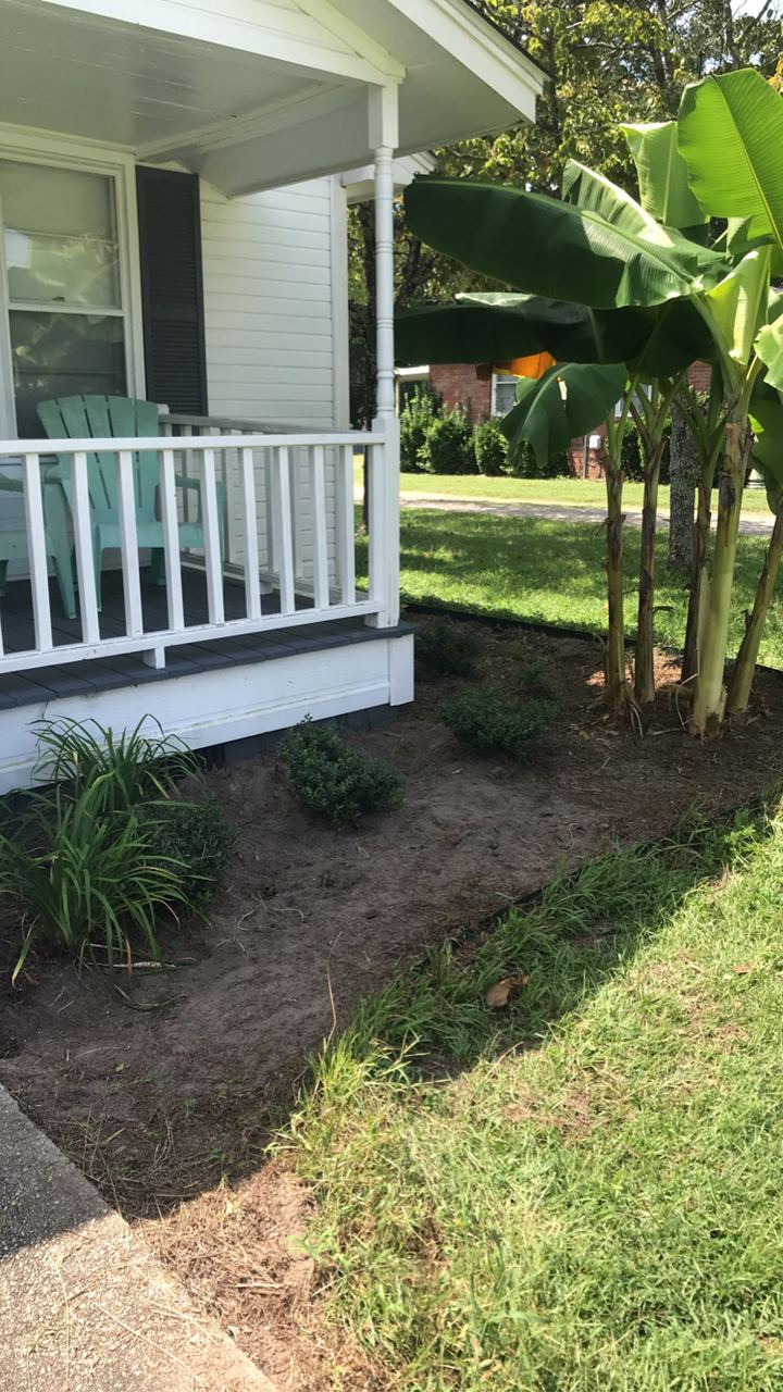 Flower Beds - During